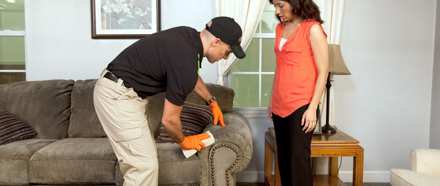 Waldorf, MD carpet upholstery cleaning