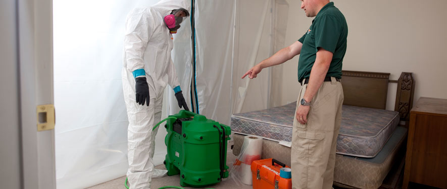 Waldorf, MD mold removal process